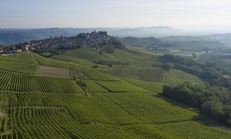 vigne-acclivi-barolo